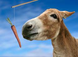 Bp-carrot-stick